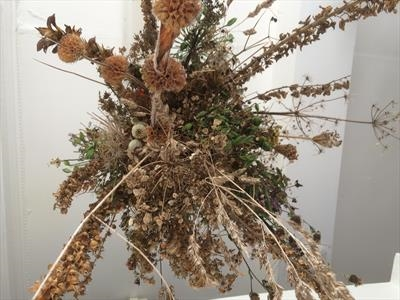 Plant bouquet by Judy Willoughby, Installation, Plants